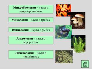 Хламидомонада - род микроскопических одноклеточных зеленых водорослей грушеви
