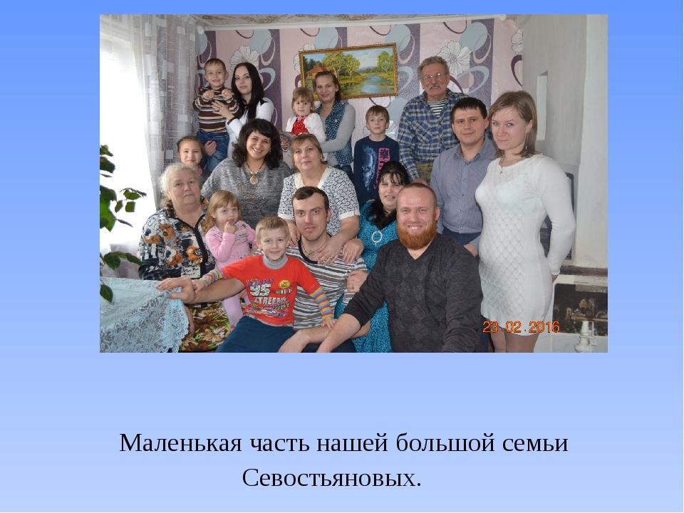 Маленькая часть нашей большой семьи Севостьяновых.