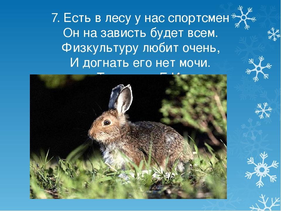 7. Есть в лесу у нас спортсмен Он на зависть будет всем. Физкультуру любит оч...