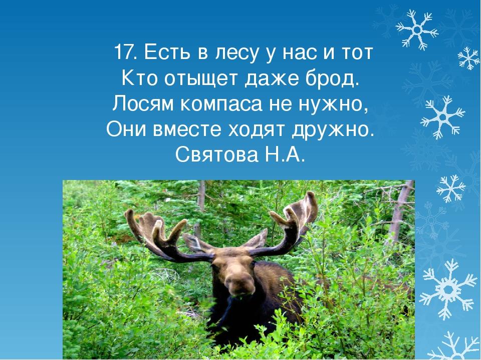 17. Есть в лесу у нас и тот Кто отыщет даже брод. Лосям компаса не нужно, Он...