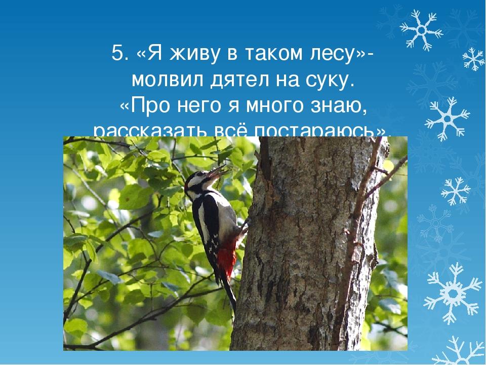 5. «Я живу в таком лесу»- молвил дятел на суку. «Про него я много знаю, расск...
