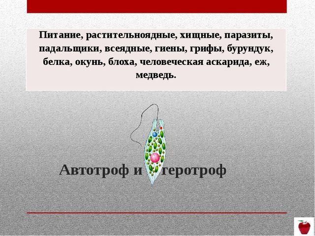 Автотроф и гетеротроф Питание, растительноядные, хищные, паразиты,падальщики,...