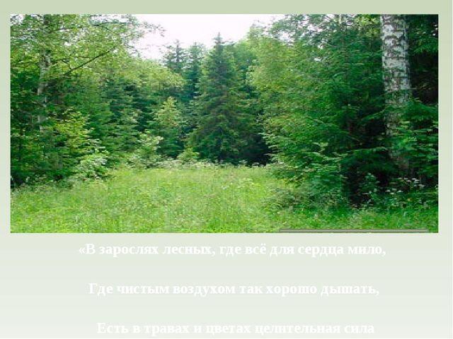 «В зарослях лесных, где всё для сердца мило, Где чистым воздухом так хорошо д...