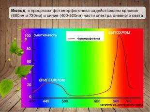 Вывод: в процессах фотоморфогенеза задействованы красные (660нм и 730нм) и си