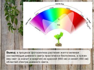 Вывод: в процессе фотосинтеза растения желто-зеленая составляющая дневного св