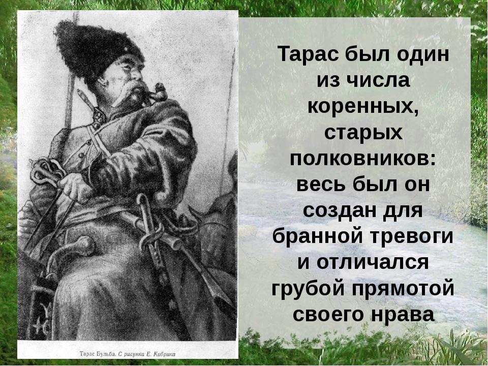 Тарас был один из числа коренных, старых полковников: весь был он создан для...
