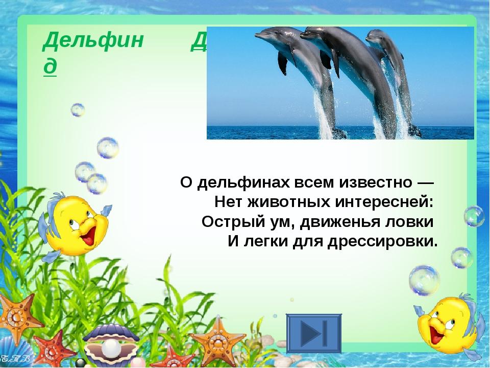 Дельфин Д д О дельфинах всем известно — Нет животных интересней: Острый ум,...