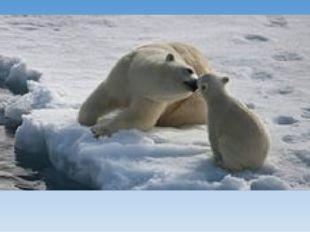 Мама и малыш.