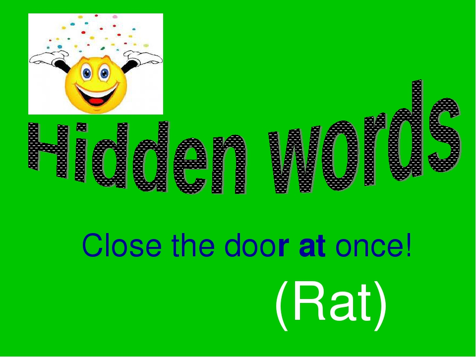 Close the door at once! (Rat)