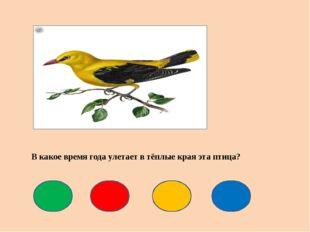 В какое время года улетает в тёплые края эта птица?