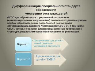 Дифференциация специального стандарта образования умственно отсталых детей ФГ