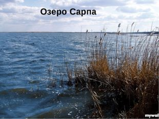 Озеро Сарпа