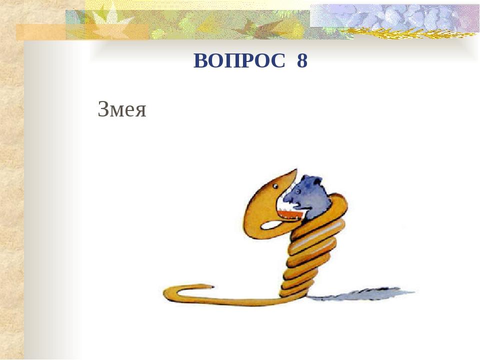 Змея ВОПРОС 8