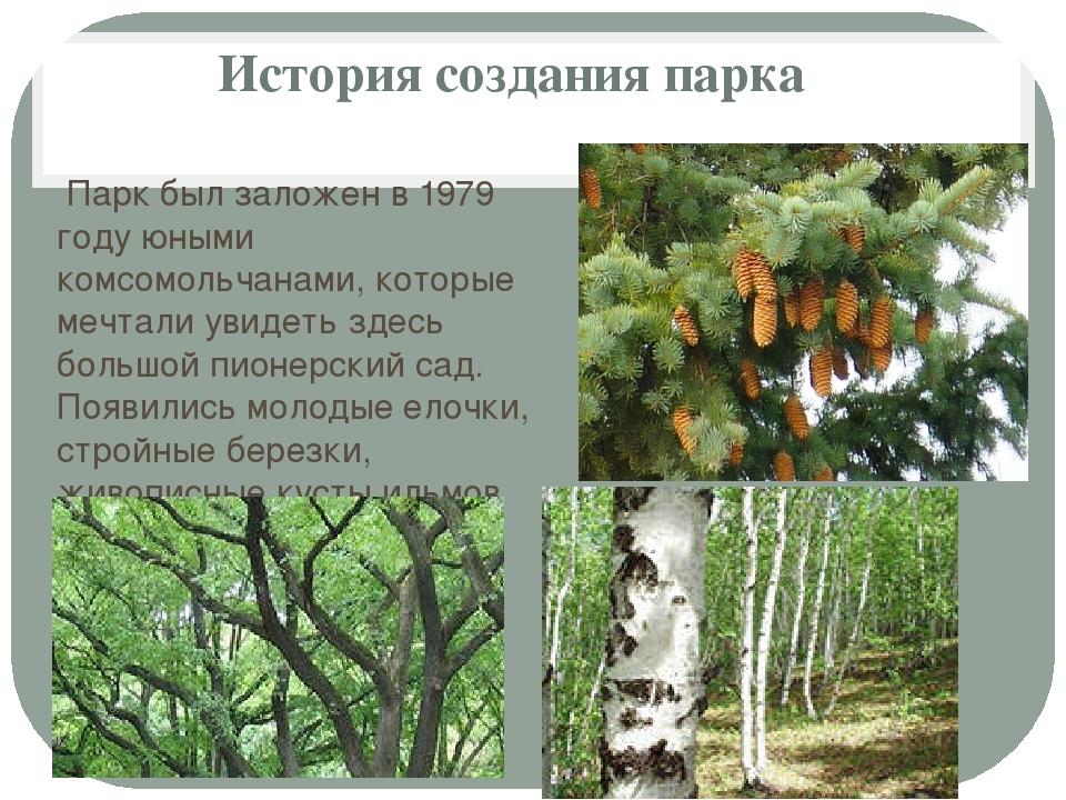 История создания парка Парк был заложен в 1979 году юными комсомольчанами, ко...