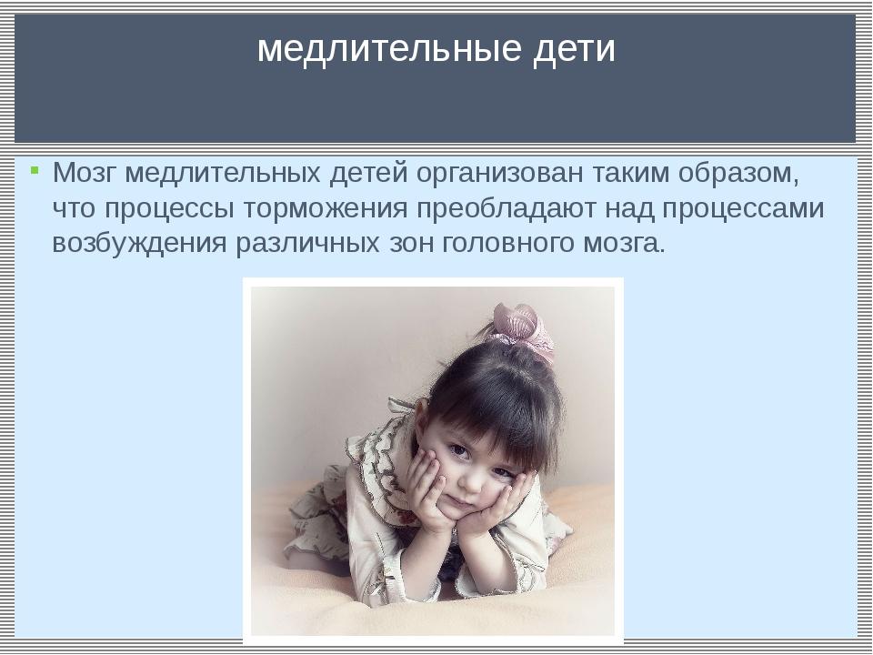 Мозг медлительных детей организован таким образом, что процессы торможения пр...