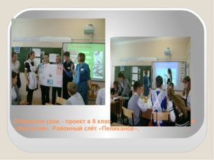 Открытый урок - проект в 8 классе. МБОУ СОШ №20 по теме «Экология». Районный