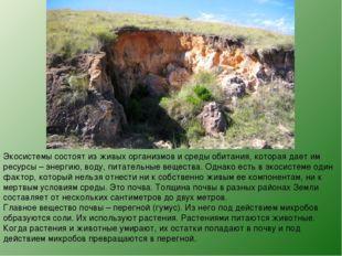 Экосистемы состоят из живых организмов и среды обитания, которая дает им ресу