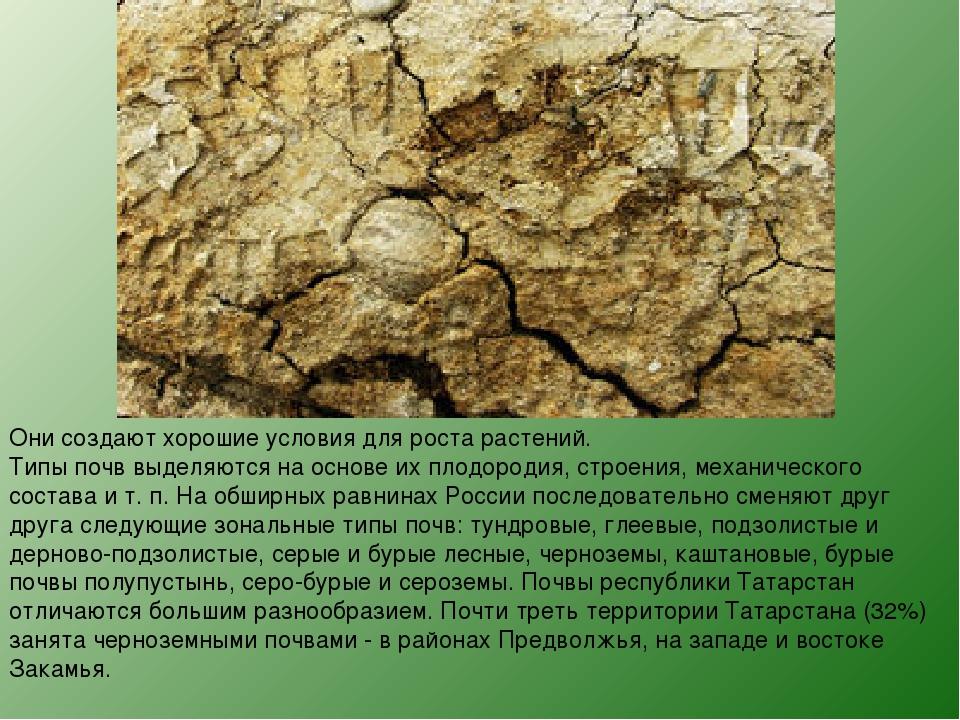 Они создают хорошие условия для роста растений. Типы почв выделяются на основ...