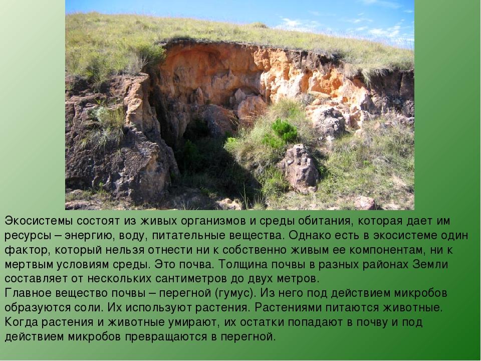 Экосистемы состоят из живых организмов и среды обитания, которая дает им ресу...