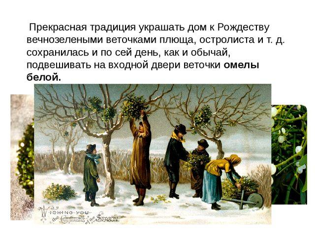 Прекрасная традиция украшать дом к Рождеству вечнозелеными веточками плюща,...
