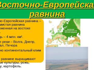Восточно-Европейская равнина Восточно-Европейская равнина – это холмистая рав