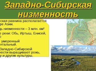 Западно-Сибирская низменность Эта плоская равнина располагается на севере Ази