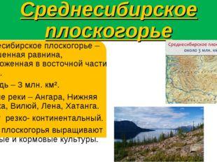 Среднесибирское плоскогорье Среднесибирское плоскогорье – возвышенная равнина