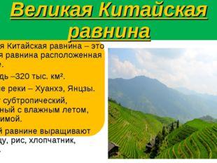 Великая Китайская равнина Великая Китайская равнина – это плоская равнина рас