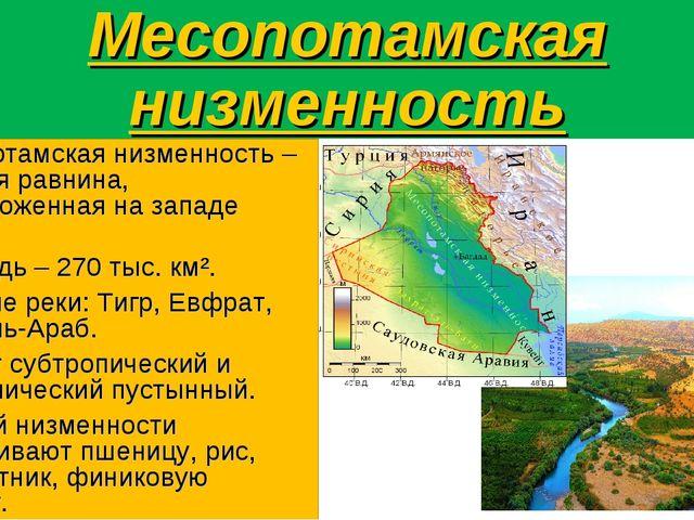 Месопотамская низменность Месопотамская низменность – плоская равнина, распол...
