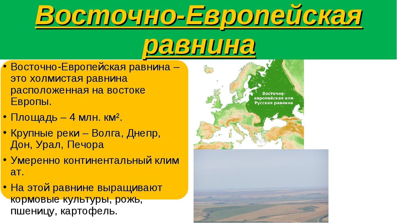 Восточно-Европейская равнина Восточно-Европейская равнина – это холмистая рав...