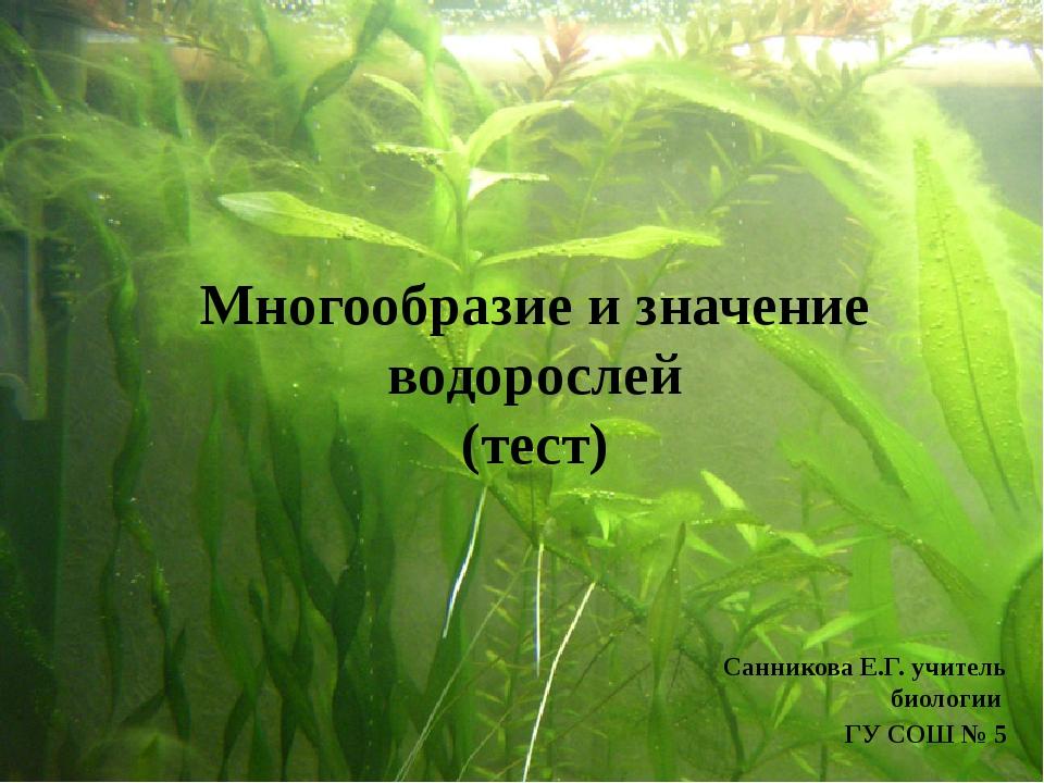 Красные водоросли: Спирогира, Хлорелла Порфира, Коралина Спирогира, Ульва Сар...