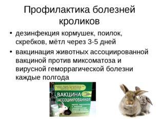 Профилактика болезней кроликов дезинфекция кормушек, поилок, скребков, мётл ч