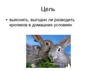 Цель выяснить, выгодно ли разводить кроликов в домашних условиях