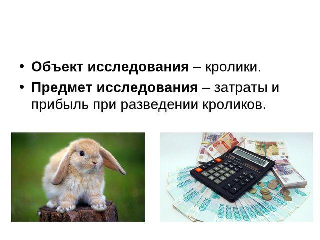 Объект исследования – кролики. Предмет исследования – затраты и прибыль при р...