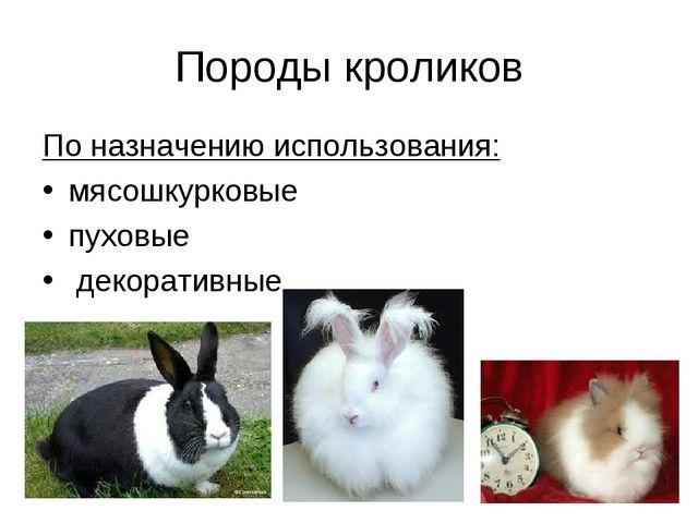 Породы кроликов По назначению использования: мясошкурковые пуховые декоративные