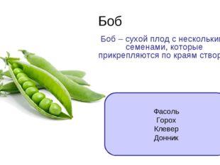 Боб Боб – сухой плод с несколькими семенами, которые прикрепляются по краям с