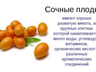 Сочные плоды имеют хорошо развитую мякоть, в крупных клетках которой накаплив