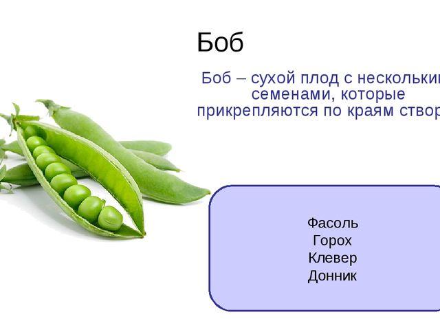 Боб Боб – сухой плод с несколькими семенами, которые прикрепляются по краям с...