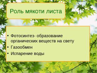 Роль мякоти листа Фотосинтез- образование органических веществ на свету Газоо
