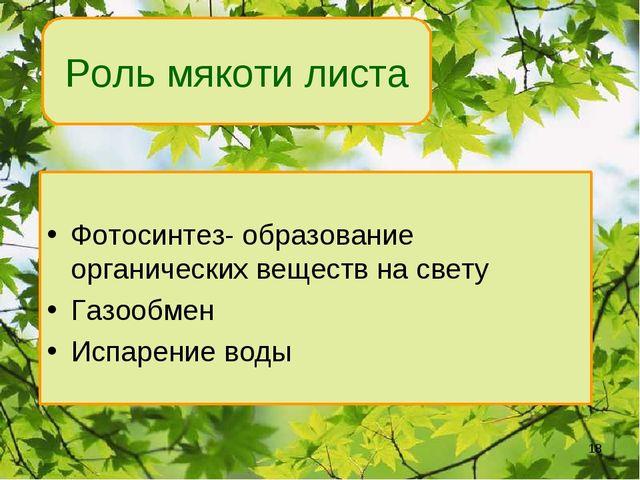 Роль мякоти листа Фотосинтез- образование органических веществ на свету Газоо...