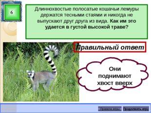 Какое животное охраняется в Воронежском Графском заповеднике? 22 Правильный о