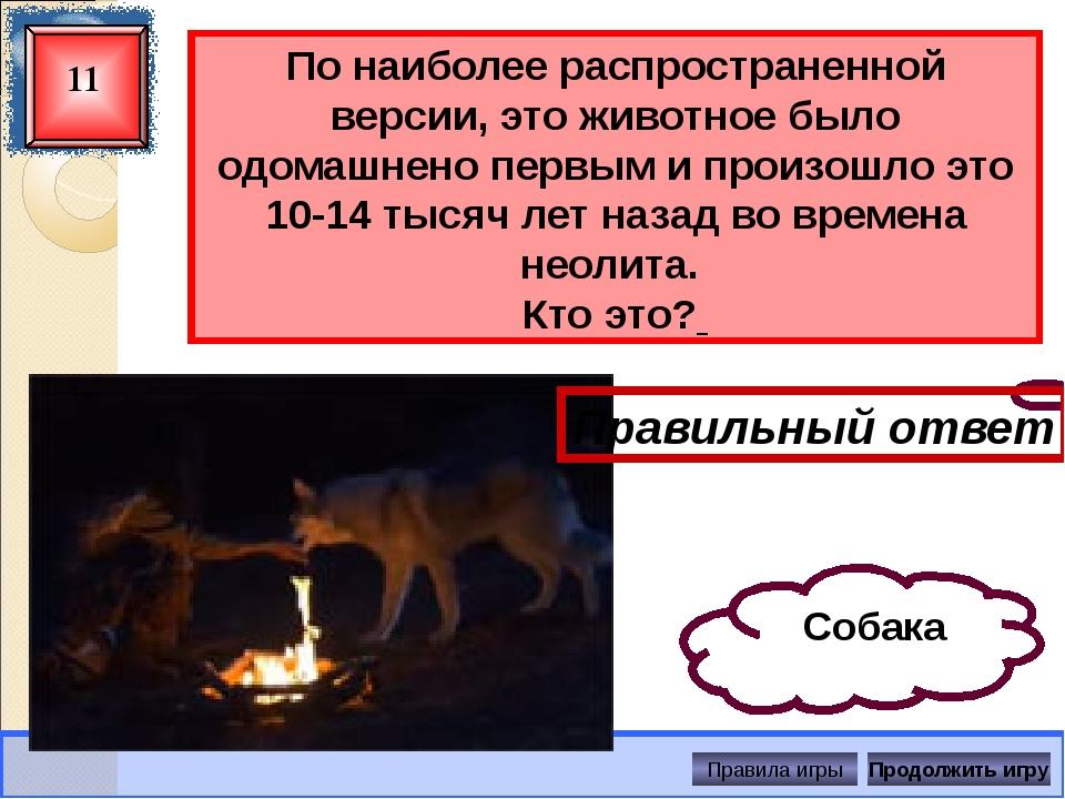 Какое животное самое высокое? 13 Правильный ответ Жираф Правила игры Продолж...