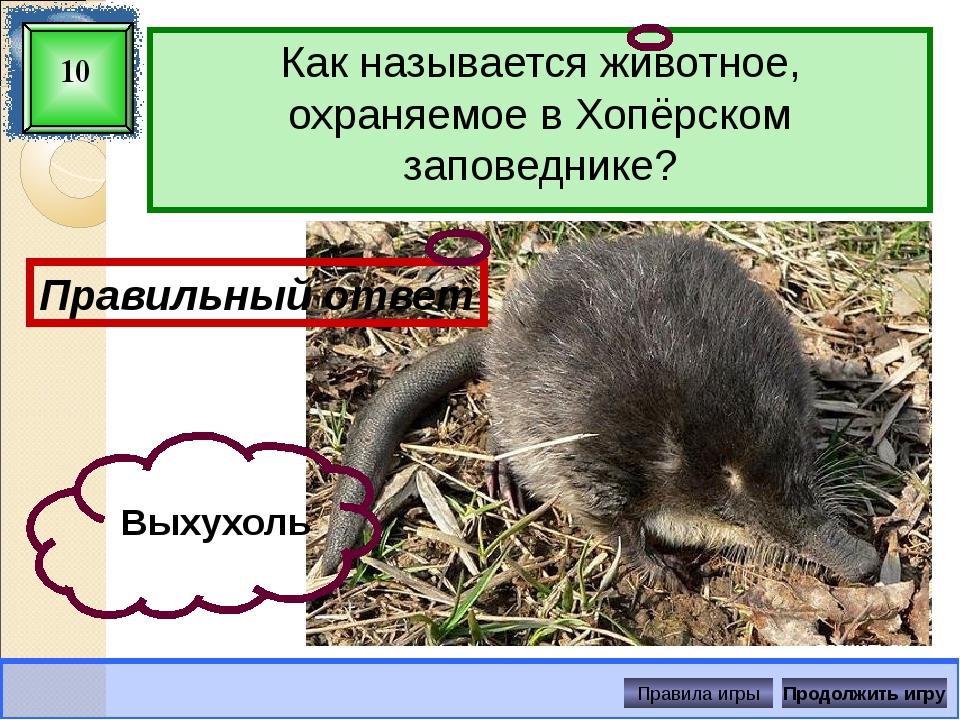 У хищников зрачок имеет щелевидную форму. И вот что интересно: у кошек он рас...