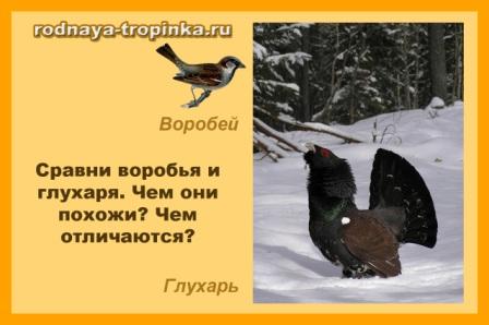 hello_html_36ff2723.jpg