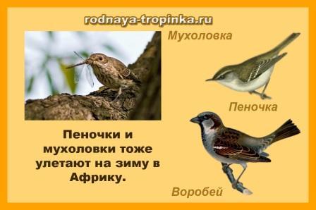 hello_html_3714762a.jpg