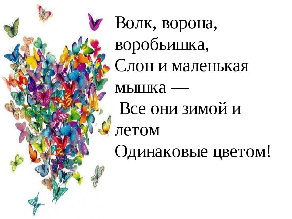 Волк, ворона, воробьишка, Слон и маленькая мышка — Все они зимой и летом Один...