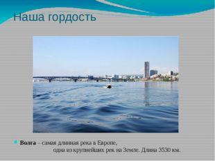 Наша гордость Волга – самая длинная река в Европе, одна из крупнейших рек на