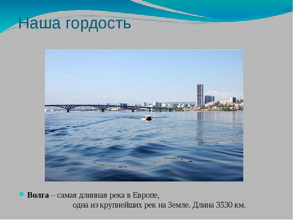 Наша гордость Волга – самая длинная река в Европе, одна из крупнейших рек на...
