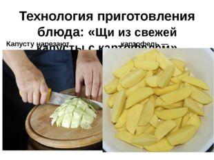 Технология приготовления блюда: «Щи из свежей капусты с картофелем» Капусту н