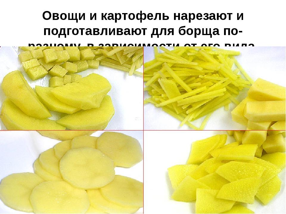Овощи и картофель нарезают и подготавливают для борща по-разному, в зависимос...